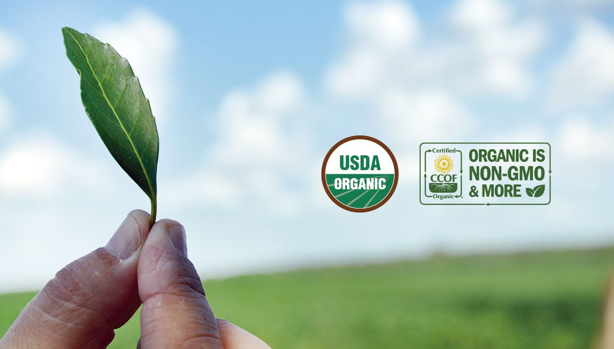 Verum-USDA-Organic-Certification